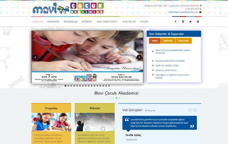 Mavi Çocuk Akademisi Web Tasarımı